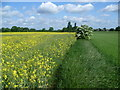 TF1105 : The countryside of John Clare near Helpston by Marathon
