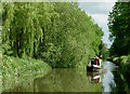 SJ9321 : Staffordshire and Worcestershire Canal south-east of Stafford : Week 22