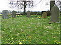 SE2385 : Churchyard, St Mary's Church by Miss Steel