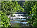 SJ9498 : Weir on the River Tame, Dukinfield by David Dixon