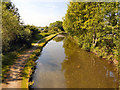SJ9397 : Peak Forest Canal by David Dixon