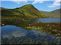NT1716 : Loch Skeen by Eileen Henderson