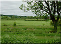 SJ9353 : Farmland with disused railway near Endon, Staffordshire by Roger  Kidd