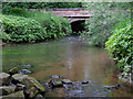 SJ9852 : River Churnet at Cheddleton, Staffordshire by Roger  Kidd