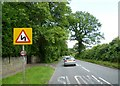 SJ7382 : Mereside Road by Anthony Parkes