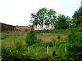 NH1686 : House and barn on the hill by Dave Fergusson