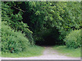 SK0247 : Footpath to the canal at Froghall, Staffordshire by Roger  Kidd