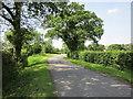 SJ4572 : Hob Lane near Moss House Farm by Jeff Buck