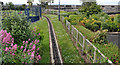 J5082 : Miniature railway, Bangor (1) by Albert Bridge
