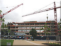 TQ3677 : Deptford Green School being rebuilt by Stephen Craven