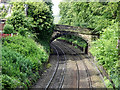 SJ9799 : Bridge to Heyrod Hall by David Dixon