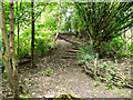 SD9701 : Path and Steps at Scout Green, Tame Valley by David Dixon