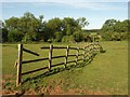 SP2854 : Fence by the Dene by Derek Harper