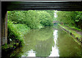 SJ8837 : Trent and Mersey Canal near Meaford, Staffordshire by Roger  Kidd