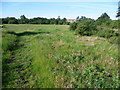 Dist:0.1km<br/>This is the smaller part of Dartford Heath to the south of the A2; it is mostly woodland. This is one of the few open areas and looks towards the area known as Maypole.