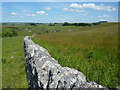 SK1765 : White Peak dry stone wall by Peter Barr