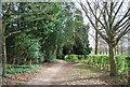 TQ1731 : West Sussex Literary Trail , Horsham Park by N Chadwick