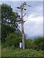 TM3872 : Electricity Pole next to the footpath to the A144 by Adrian Cable