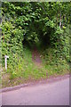 SS9345 : Tivington: start of bridleway up to Wootton Common by Christopher Hilton