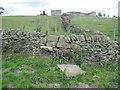 SE2206 : Footpath towards Fall Edge Farm by Chris Wimbush