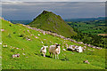 SK0667 : Towards Chrome Hill by Ian Capper