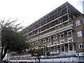 TQ2978 : Scaffolding, Cambridge Street, Pimlico by PAUL FARMER