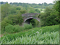 SJ9453 : Railway bridge east of Denford, Staffordshire by Roger  Kidd