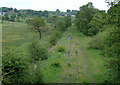 SJ9453 : Disused railway west of Denford, Staffordshire by Roger  Kidd