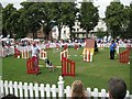 SP3165 : Doggie event, Pump Room Gardens by Robin Stott