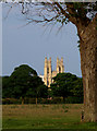 TA0339 : Beverley Minster from Beverley Westwood : Week 28