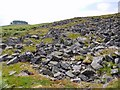 NY9324 : Block scree north-west of Kirkcarrion by Andrew Curtis