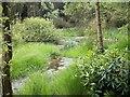 SU9196 : Beamond End Pond by michael