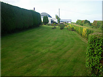 H7034 : Manicured country home lawn with hedges by C Michael Hogan