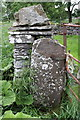 SE0190 : Gatepost with benchmark beside road to Redmire by Roger Templeman