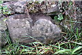 SE0290 : Benchmark on stone at side of Brunton Bank by Roger Templeman