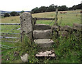 SJ8957 : Stone stile and gatepost by Jonathan Kington