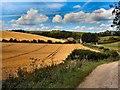 TQ3111 : Farmland south of Lower Standean by Paul Gillett