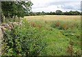 ST8361 : Field near Woolley by Derek Harper