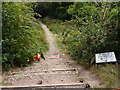 SK3932 : Untidy footpath by Peter Barr
