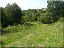 SE0026 : Hebden Royd Footpath 44 near Stubb, Mytholmroyd by Humphrey Bolton
