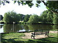 TQ4598 : Village pond, Theydon Bois by Malc McDonald