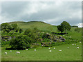 SN7579 : Rocky outcrop and pasture at  Ysbyty Cynfyn, Ceredigion by Roger  Kidd