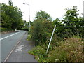 SJ9689 : Footpath in need of clearing by Peter Barr