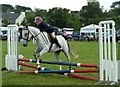 NX4254 : Junior Showjumping by Andy Farrington