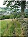 SE0025 : Hebden Royd Footpath 48, Mytholmroyd by Humphrey Bolton