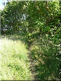 SE0026 : Hebden Royd Footpath 44 near Calder Brook, Mytholmroyd by Humphrey Bolton