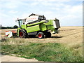 TV5099 : Combine Harvester, Seaford by nick macneill