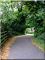 ST5972 : Riverside path by Thomas Nugent