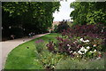 TQ3081 : Flowerbed in Russell Square by Bill Boaden