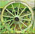 SO3049 : Old barrow wheel : Week 32